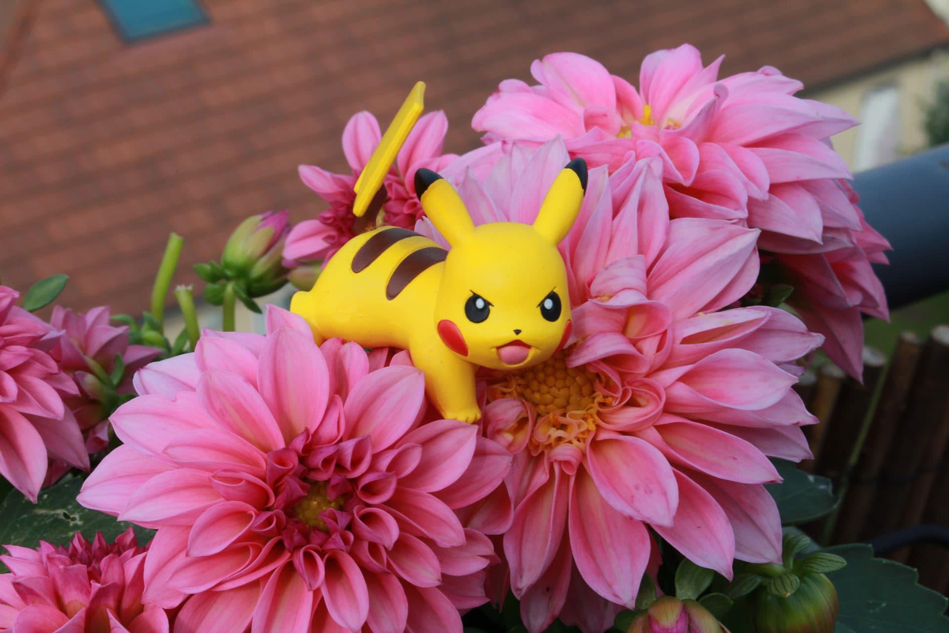 5 Tipps für den Einsatz von Pokémon Go im Tourismus